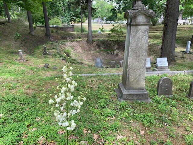 Geology of Mount Hope Cemetery