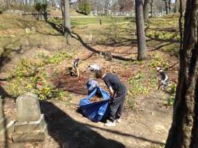 Filling tarp with raked leaves