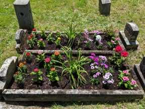 planted cradle graves